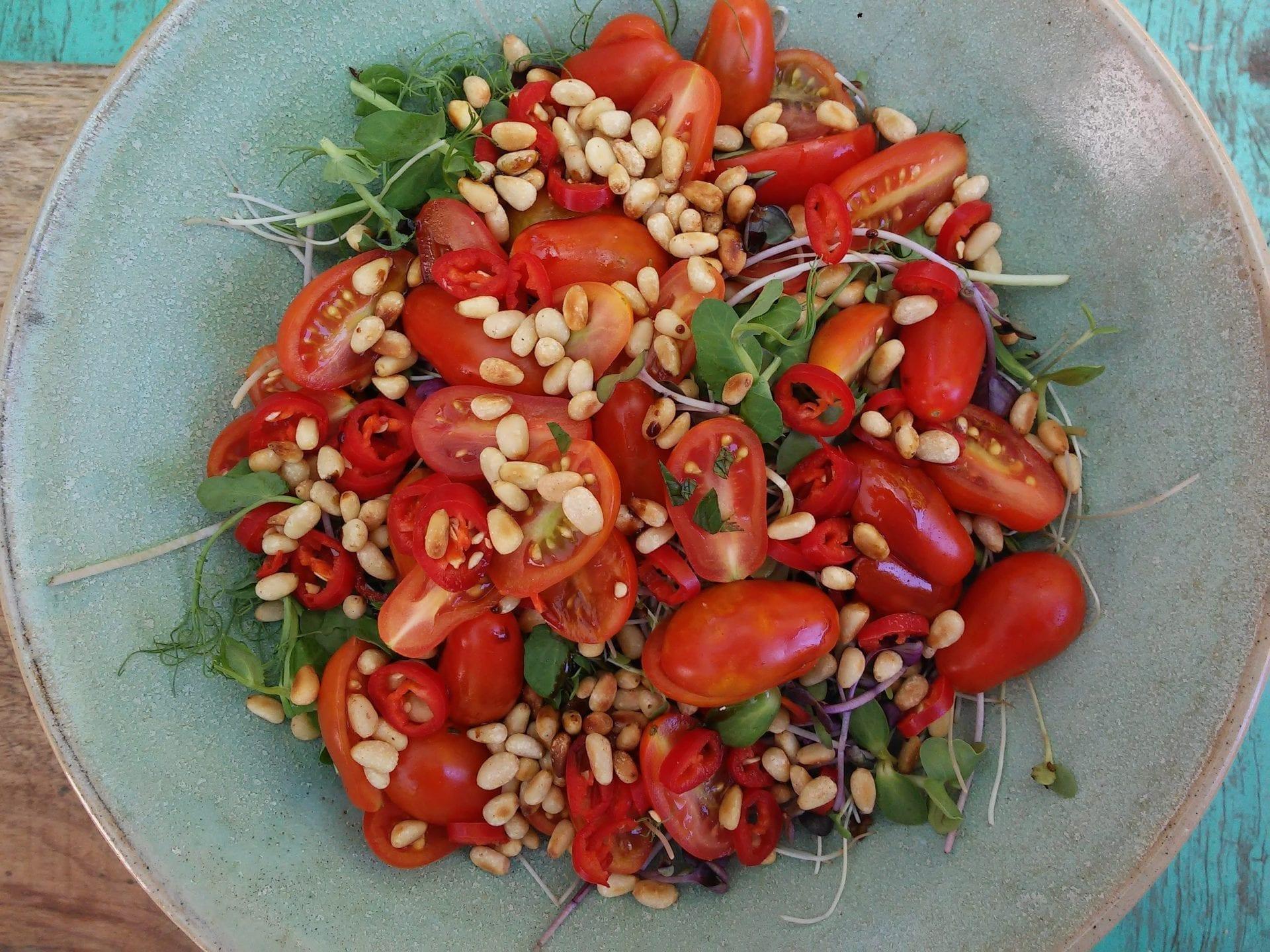 סלט עגבניות קיצי חריף ומרענן שלא תוכלו להפסיק לאכול